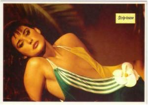 Demi Moore in Striptease Movie Postcard