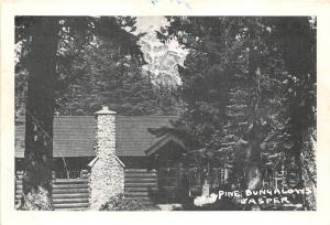 B5238 Jasper Pine Bungalow Cabins