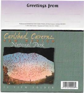 Carlsbad Caverns 12 View Folder post card.