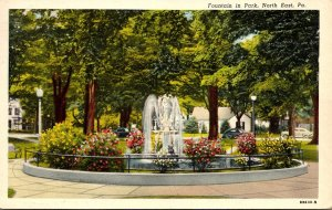Pennsylvania North East Fountain In Park 1951 Curteich