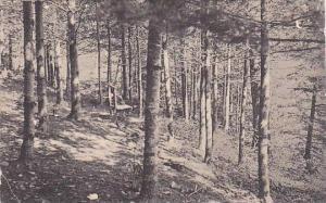 New Hampshire Lake Sunapee 1911