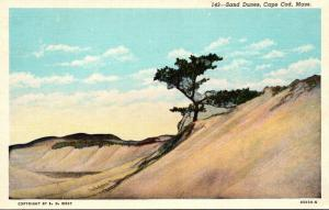 Massachusetts Cape Cod Sand Dunes 1943