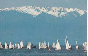 Sailboats And The Olympic Mountains, Victoria, British Columbia, Canada, 1970...