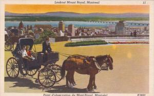Horse and Carriage Lookout Mount Royal Montreal Canada