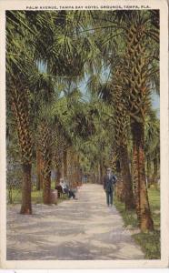 Florida Tampa Palm Avenue Tampa Bay Hotel 1920 Curteich