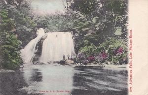 Aniwaniwa Falls New Zealand Tourist Dept Old Postcard