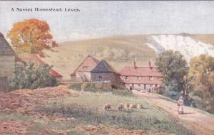 A Sussex Homestead , Lewes , 00-10s