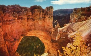 Bryce Canyon Nat'l Park, Utah, UT, Natural Bridge, Chrome Vintage Postcard g9236