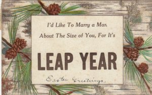 LEAP YEAR, PU-1912; Pine branches and cones, Proposal