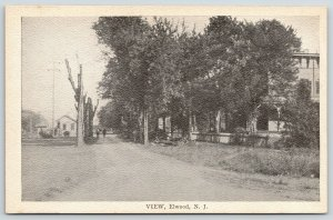 Elwood New Jersey~Two Men Chat Along Main Street~Homes~Dead Trees~1910 Postcard