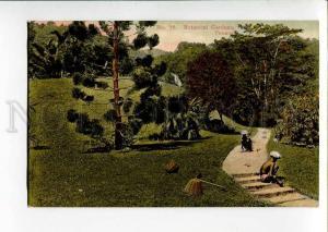 271015 Malaysia PENANG Botanical Gardens Vintage postcard