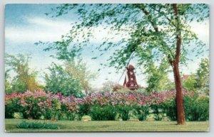 Chicago Illinois~Mount Emblem Cemetery~Grand Avenue by La Grange Road~1950s