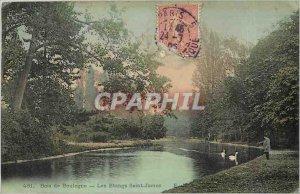 Old Postcard Bois de Boulogne The Ponds St. James