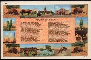 Texas Various Views - Down in Texas - Poem - LINEN