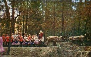 1950s Skyforest California Santa's Village Reindeer Tour Postcard Roberts 10411