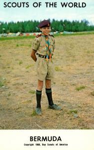 Bermuda Boy Scout In Uniform
