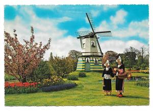 Holland Netherlands Flowers Windmills Women Traditional Costume 4X6 Postcard