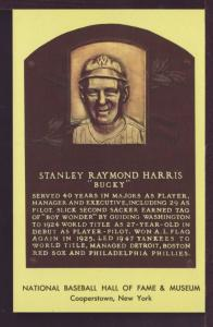 Stanley Raymond Harris Baseball Hall Fame Post Card 3252