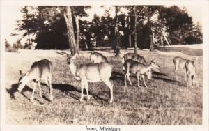 RP: Deer , IRONS , Michigan , PU-1944
