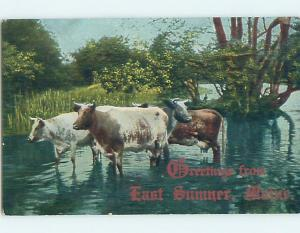 Divided-Back POSTCARD FROM East Sumner Maine ME HM6722