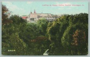 Waukegan Illinois~Looking up Happy Hollow Ravine~Resort @ Top~c1910 Postcard