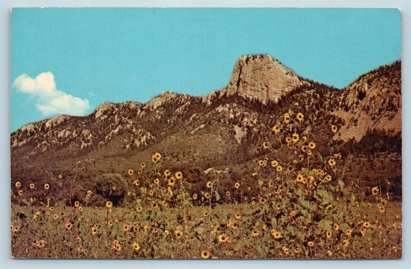Postcard NM Cimarron Philmont Boy Scout Ranch BSA Tooth of Time Mountain O02