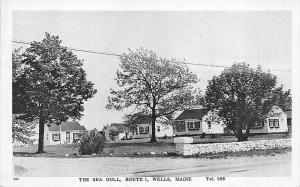 Wells ME The Sea Gull Located on US 1 in 1952 Postcard