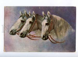 189630 Heads of Three WHITE HORSES Troika Vintage Colorful PC
