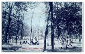 1907 Loomis Park, Jackson, MI Postcard