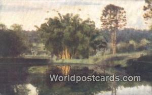 Ceylon, Ceylan, Sri Lanka Peradeniya Gardens Giant Bamboos