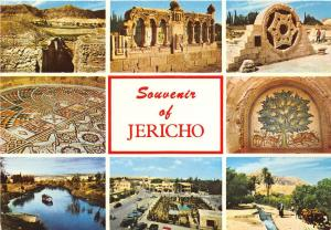 BR3075 Jericho - City of Palms in the Jordan Valley  israel