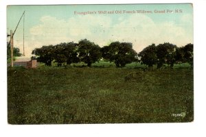 Evangeline's Well, Old French Willows, Grand Pre, Nova Scotia, Used 1909