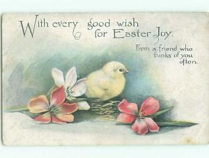 Divided-Back EASTER CHICK SCENE Cute Postcard AA0871