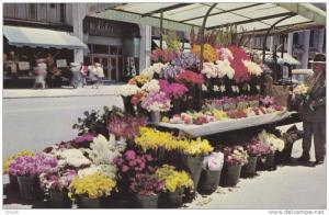 California San Francisco, Sidewalk Flower Stand , 50-60s