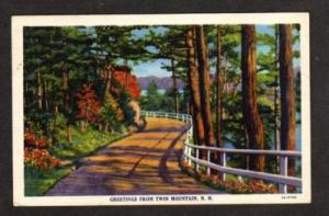 NH Greetings from TWIN MOUNTAIN NEW HAMPSHIRE Postcard