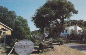 Exterior View, Landscape Outside Antique Shop, Quaint Village, Outer Banks, D...