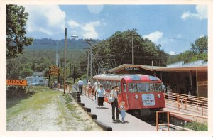 Tennessee Train Postcard World's Steepest Incline Famous Lookout Mountai...