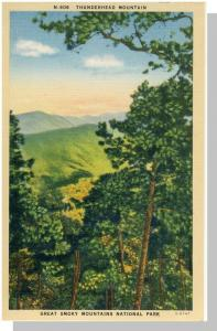 Smoky Mountains Nat'l Prk,NC/TN Postcard,Thunderhead,Nr Mnt