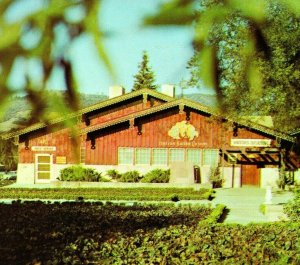 Asti CA Italian Swiss Colony Winery Wine Tasting Room UNP Vtg Chrome Postcard