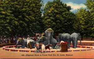 Missouri St Louis Forest Park Zoo Elephant Show Curteich