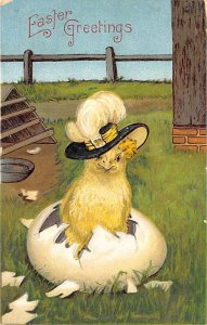 Easter Greetings Chicken 1909
