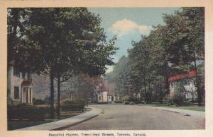 Beautiful Homes, Tree-Lined Streets,  Toronto,  Ontario,  Canada,  30-40s