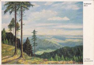 AS: Ferdinand Dorr, Im Hochschwarzwald, Baden-Wurttemburg, Germany, 10-20s