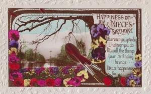 Antique Parker Fountain Pen Pens Writing Nieces Birthday Photo Postcard