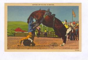 Rodeo ; Getting off to Stay in Nevada, 30-40s