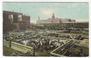 Stock Yards Kansas City Missouri 1912 postcard