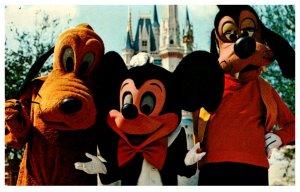 Florida  Walt Disney World ,  Welcome to the Magic Kingdom