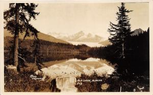 Auk Lake Alaska~Beautiful Wilderness Scene~Forest~Mountain in Distance~RPPC