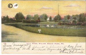 Vintage Postcard, Lily Pond Willow Grove Park Pennsylvania