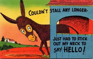 Humour Donkey In Barn Couldn't Stall Any Longer